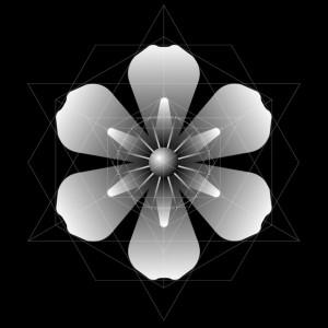 Génesis de Organizaciones radiales de multiplos. 3 y 4.