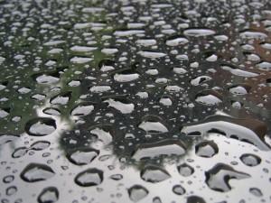 Perlas de lluvia
