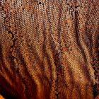 texturas_y_patrones