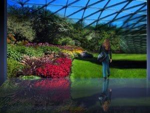 El proyecto Biosfera 2 resucitará para estudiar el cambio climático global