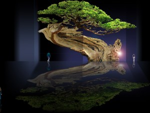 Bonsai / Continentes de deidades