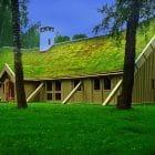 techos_verdecidos